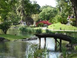 Hotel Arenales - Jardín Japones