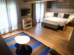 Hotel Arenales Junior Suite